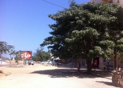 ゲストハウス 周辺 セネガル